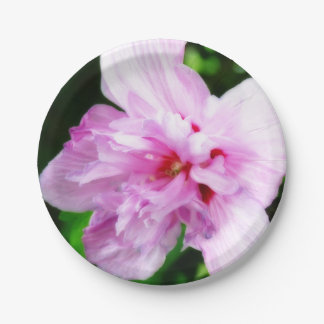 Pink Flower Paper Plates