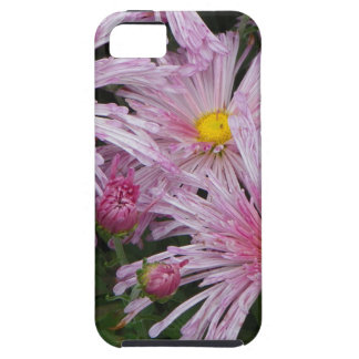 Pink Flower Photo Gift iPhone SE/5/5s Case
