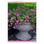 Pink Flower Planter Notes Greeting Cards