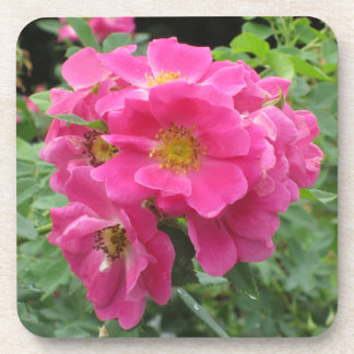 Pink Flower Plastic Coasters Lush Green Background