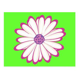 pink flower postcards