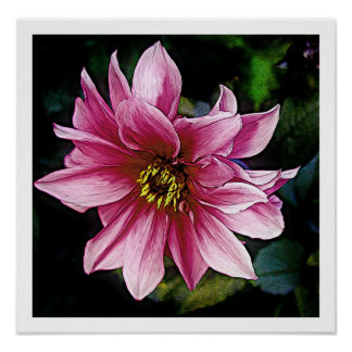 Pink Flower Posters