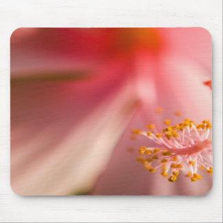 Pink Flower Stamen Macro Photography Mousepad