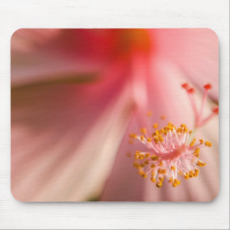 Pink Flower Stamen Macro Photography Mouse Pad
