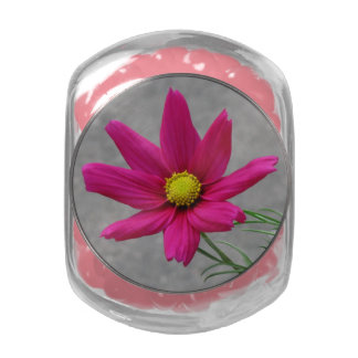 Pink Flower tins & jars Jelly Belly Candy Jars