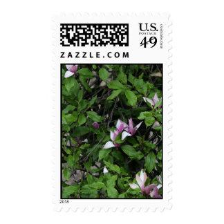 Pink Flower Tree Postage