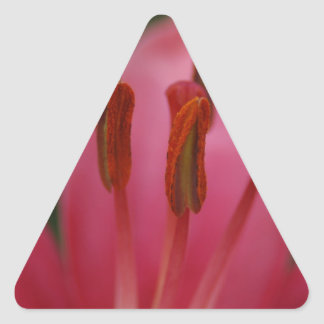 Pink Flower Triangle Sticker
