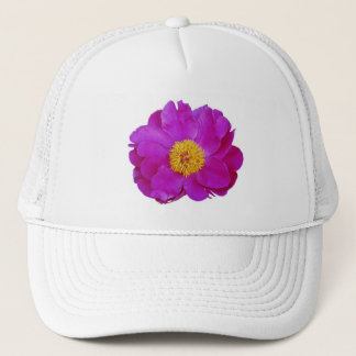 Pink Flower, White Background, Hat