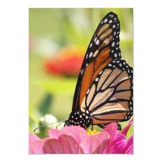 Pink flower with monarch butterfly card
