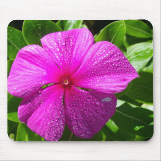 Pink Flower with Raindrops Mouse Pad