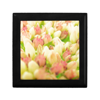 Pink Flowerbed Keepsake Box