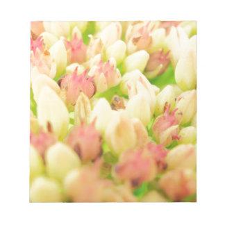 Pink Flowerbed Scratch Pad