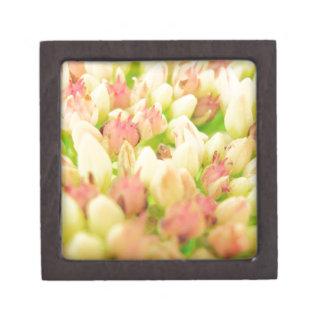 Pink Flowerbed Premium Keepsake Box