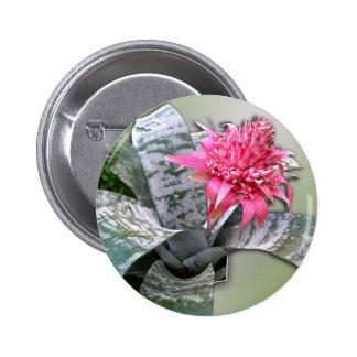 Pink Flowered Bromeliad Pinback Button