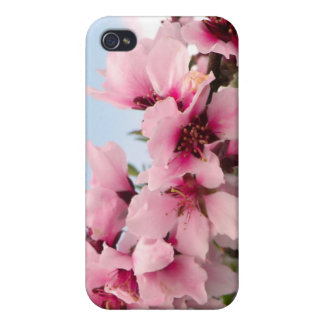 Pink Flowering Branch Cover For iPhone 4