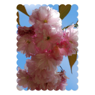 Pink Flowering Cherry Tree 5x7 Paper Invitation Card