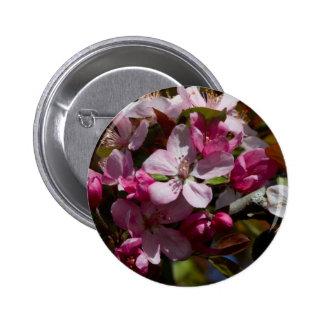 Pink Flowering Crabapple Blooms Pin