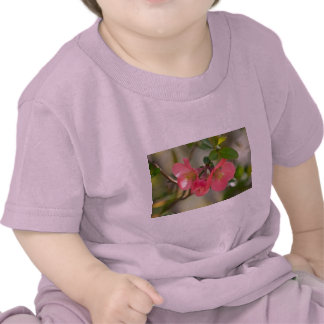 Pink Flowering Quince Glow Tee Shirts