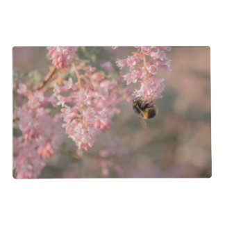 Pink flowers and bee close up photograph placemat
