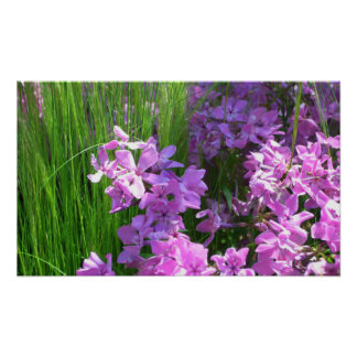 Pink Flowers and Grass Print