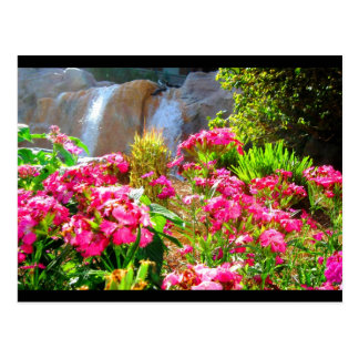 Pink Flowers and Waterfall Postcard