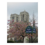 Pink Flowers at Notre Dame Posters