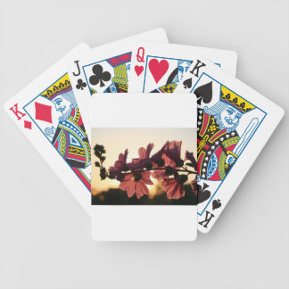 Pink Flowers at Sunset Bicycle Playing Cards