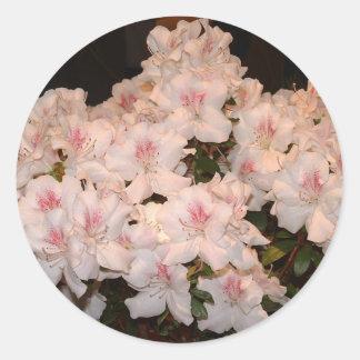 Pink Flowers, Azalias Classic Round Sticker