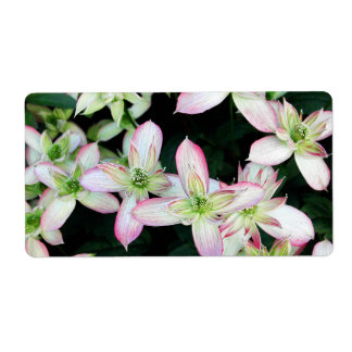 Pink flowers Clematis Custom Shipping Labels