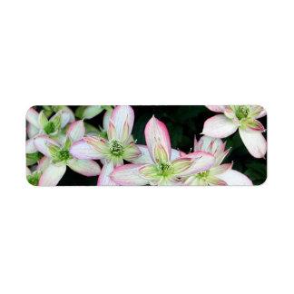 Pink flowers Clematis Custom Return Address Label