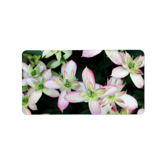 Pink flowers Clematis Custom Address Label
