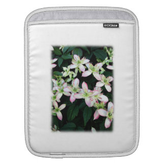 Pink flowers. Clematis. On White. iPad Sleeve