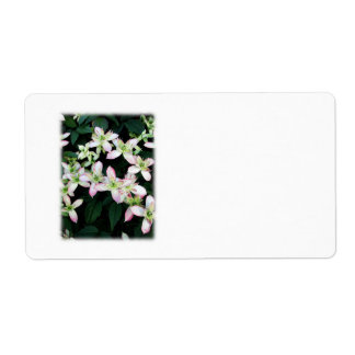 Pink flowers Clematis On White Shipping Label