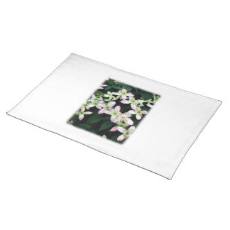 Pink flowers. Clematis. On White. Cloth Place Mat
