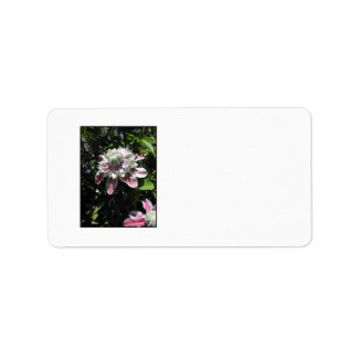 Pink flowers Clematis Stylish design Personalized Address Label