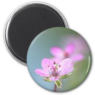 Pink flowers fridge magnet