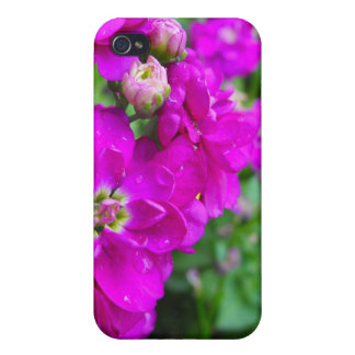 pink flowers, green leaves, initials cover for iPhone 4