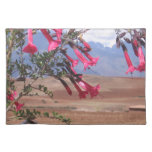 Pink Flowers in a Tree Placemats