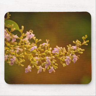 Pink Flowers in Bloom Mouse Pad