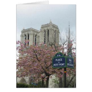 Pink Flowers in Paris Card