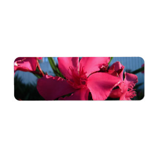 Pink Flowers Label