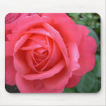 Pink Flowers Mousepad Red Rose Decor Gifts