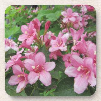 Pink Flowers of Germany Beverage Coasters