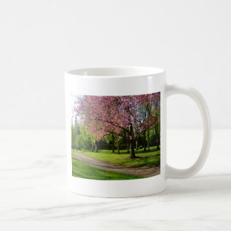 Pink flowers Of prunus in a park Classic White Coffee Mug