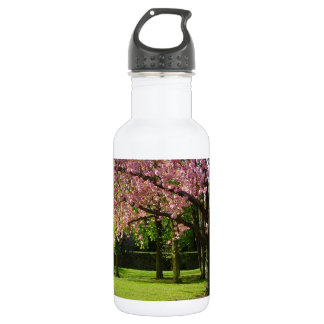 Pink flowers Of prunus in a park Stainless Steel Water Bottle