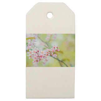 Pink flowers on the bush. Shallow depth of field. Wooden Gift Tags