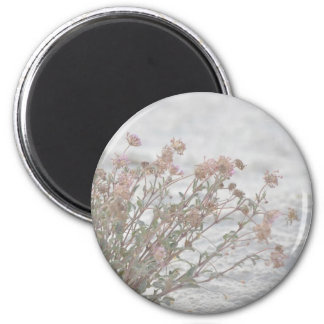 Pink Flowers On White Sand 2 Inch Round Magnet