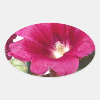 Pink Flowers Oval Sticker