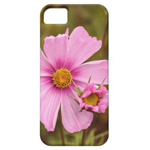 Pink Flowers phtographed by Tutti iPhone 5/5S Cases
