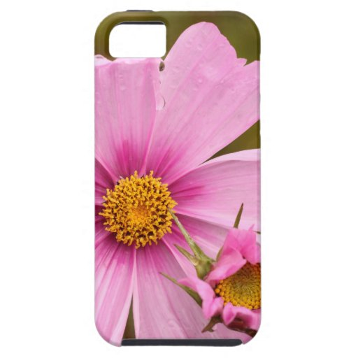 Pink Flowers phtographed by Tutti iPhone 5/5S Covers